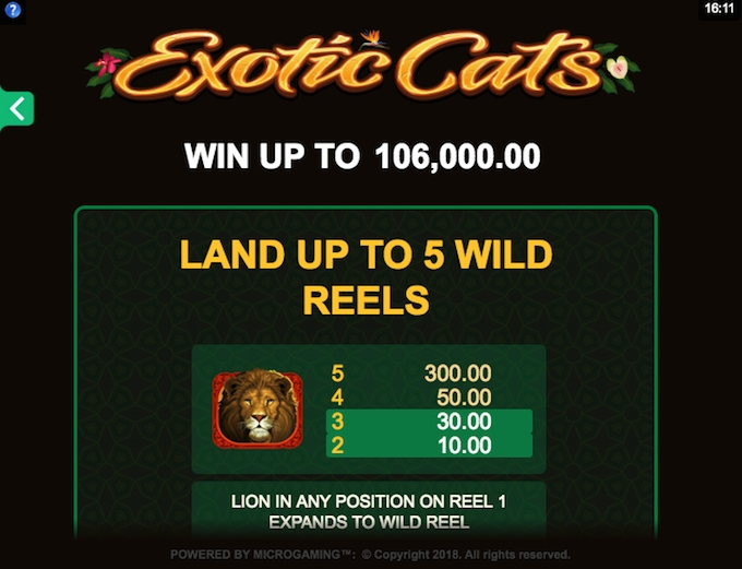 Exotic Cats slot - win up to 160,000 coins