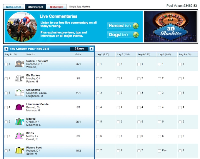 Placepot bets at William Hill - placepot tips