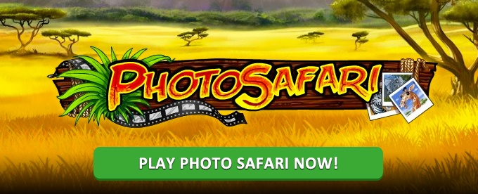 Play Photo Safari slot at Casumo casino