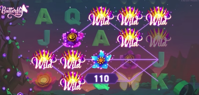 Butterfly Staxx slot features