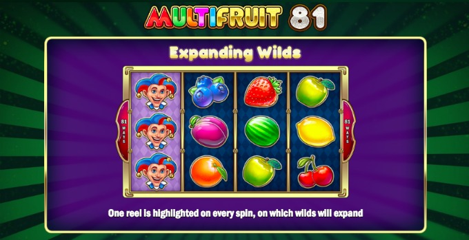 Play Multifruit 81 slot at Dunder Casino